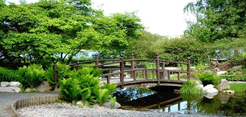 Бергианский ботанический сад. Стокгольм BXj9q0cP24U