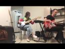 Птица басист и Окси басист занимаются
