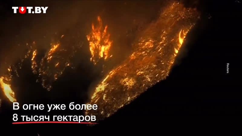 Калифорнийский пожар, жесть