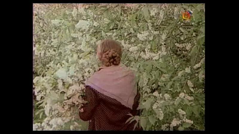 Вечный зов. Новая версия (1973-1983) VHSRip 24 серия