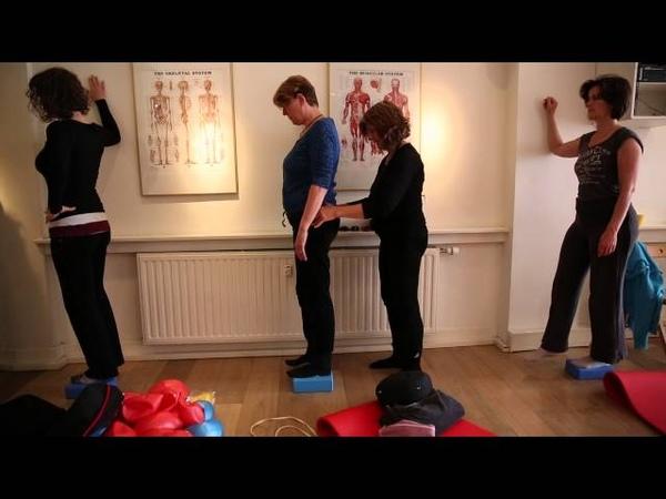 Nascholing over de Psoas met Liz Koch, Akademie voor Massage en Beweging