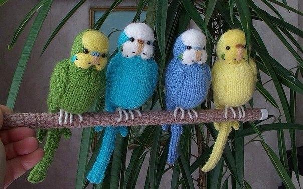 Симпатичные вязаные попугайчики. Идея…. (1 фото) - картинка