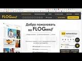 Обзор ICO flogmall