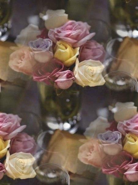 Цветочные и растительные фоны - Страница 3 SKUAH2DsIN4