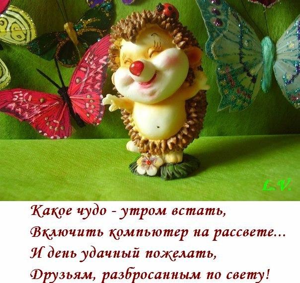http://pp.vk.me/c411823/v411823782/2e51/g3gZUEEppDQ.jpg