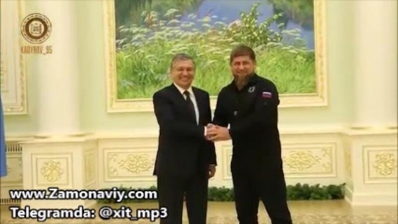 Рамзан Қодиров Шавкат Мирзиёевга видеотабрик йўллади