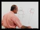 032. Brain Stem (Basic Concepts) part 1