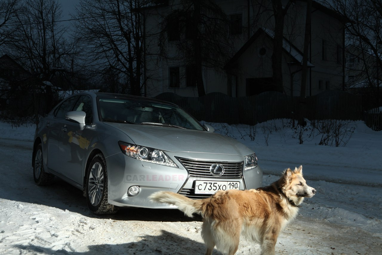 Lexus ES 250 2013 winter