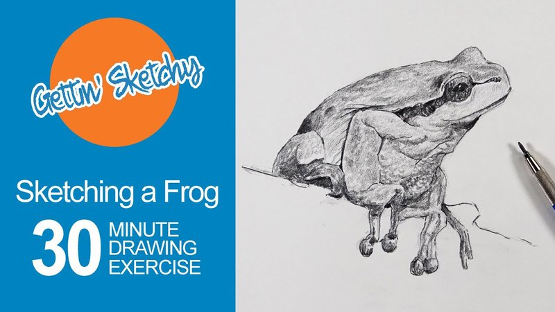 Sketching a Frog Gettin' Sketchy Live