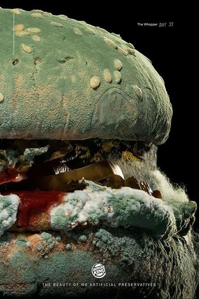 Чтобы угодить cвоим клиентам, Burger ing решил больше не использовать искусственные консерванты и красители в своей продукции и показывает, как будет выглядеть их бургер через 34 дня.