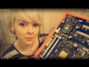 🖥 Милая девушка собирает компьютер