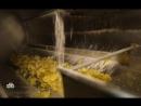 научно популярный Еда живая и мертвая 05 05 2018 альтнрнатива ягод годжи киноа консервные банки тунец состав чипсы аклиламид яд