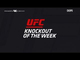 KO of the Week Justin Gaethje vs Michael Johnson