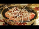 Cattle Decapitation An Exposition of Insides OFFICIAL