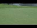 Невероятный удар гольфиста