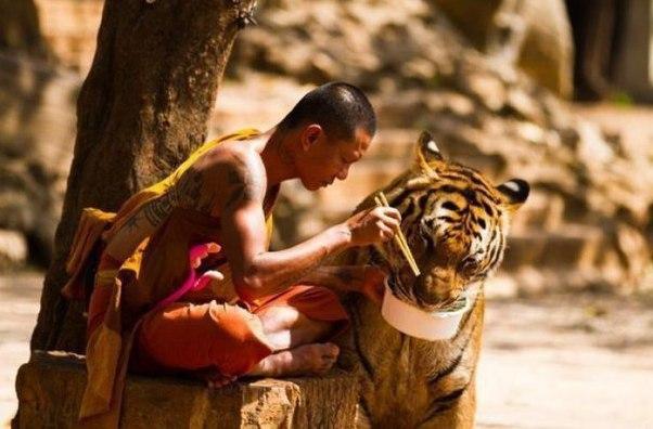 32 совета успешной жизни, выписанные из Тибетских рукописей.  1. Гов