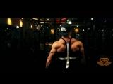 Tavi Castro - From Zero to Superhero - Engineered Life