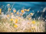 Jamala - Eris (Airborne Angel Remix)