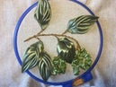 Береза вышитая атласными лентами /Birch embroidered satin ribbons