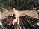Белая птица с черной отметиной (1971) Полная версия