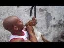Strong Pitbull Melvin Manhoef na Escalada