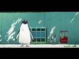 «Тайная жизнь пингвинов» — дублированный трейлер