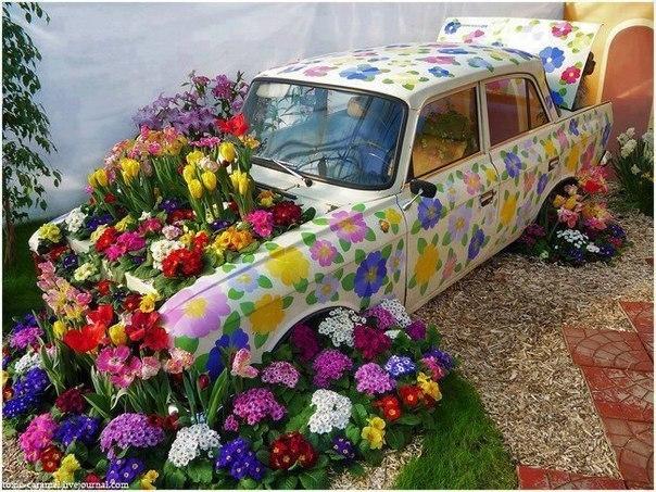 Цветы омск