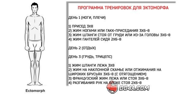 Схема тренировок для эндоморф 156