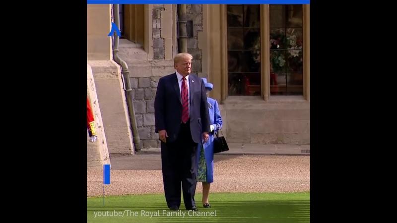 Трамп пам парамп и королева АКУЛА