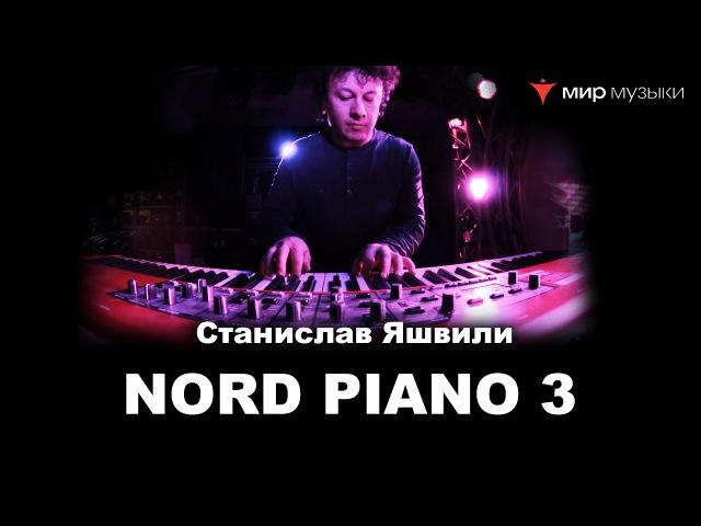 Clavia Nord Piano 3 (Станислава Яшвили)