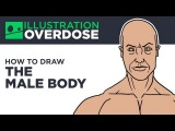 How to Draw the Male Body - Basic Shapes