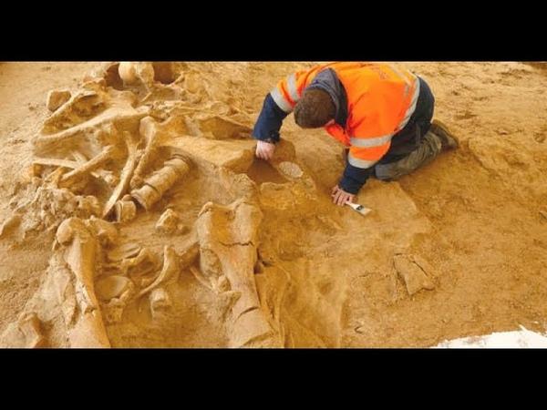 Когда эти артефакты были обнаружены учеными, их сначала приняли за фальсификации. Следы пришельцев