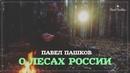 Павел Пашков о лесах России Важное обращение к общественности