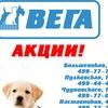 """Сеть многопрофильных ветеринарных клиник """"ВЕГА"""""""