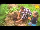 Выращиваем картошку под соломой