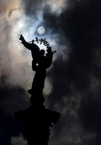 Віта Стефанишин, Тернополь - фото №3