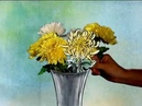 Chrysanthemums in Chinese culture Hello China 43