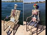 The world of skeleton