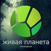 ВГТРК запускает телеканал «Живая планета» (Видео)