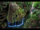 Расслабляющие звуки природы Лесной ручей Sounds of nature Relax