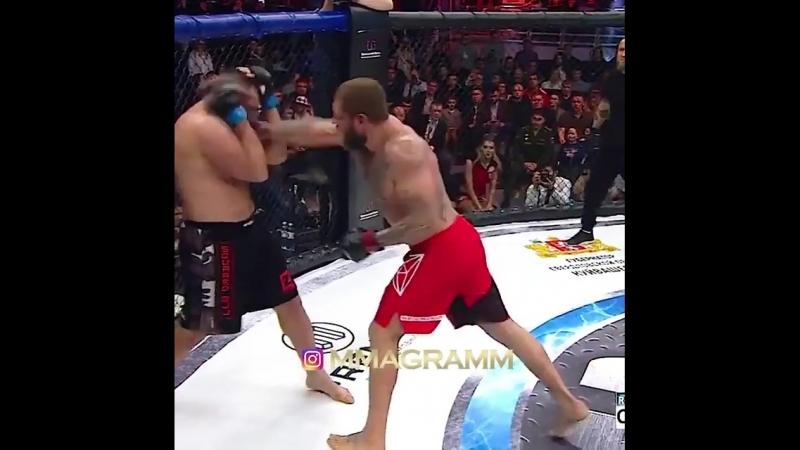 Против бывшего бойца ufc. Alexander Emelianenko vs. Gabriel Gonzaga