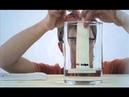 Простая наука - Живая радуга 6 из 80 2013
