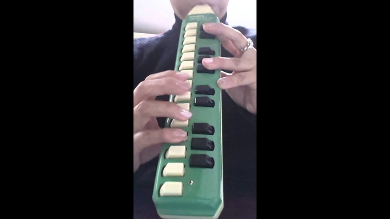 Hohner melodica sopranoで「The Entertainer」