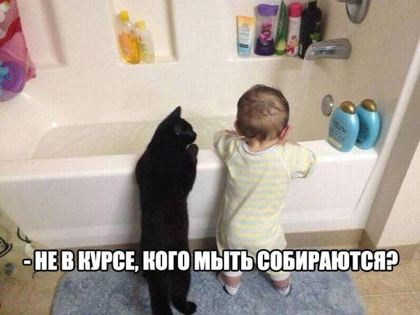 https://pp.vk.me/c7004/v7004298/15d7b/EYDIlStKcyw.jpg