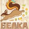 Белка_рукоделка/скраптовары