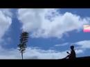 Ужасно трогательное видео До слёз.mp4