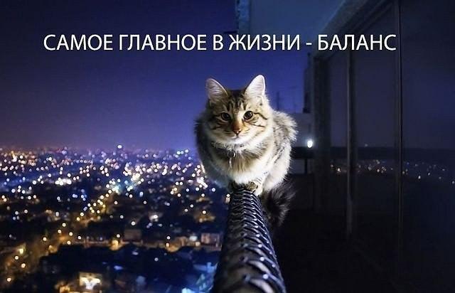 Ваня Сидорук, Ровно - фото №12