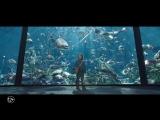 RUS | Трейлер фильма «Аквамен — Aquaman». 2018.