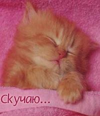 Леля Любимова, 4 августа 1985, Одесса, id190800466