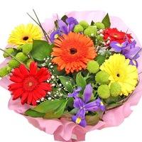 Цветы с доставкой в нарве где купить чёрные тюльпаны